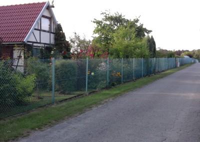 Główna aleja ogrodu