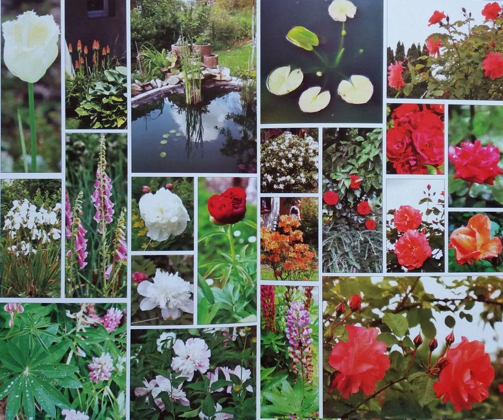 Kolorowe ogrody